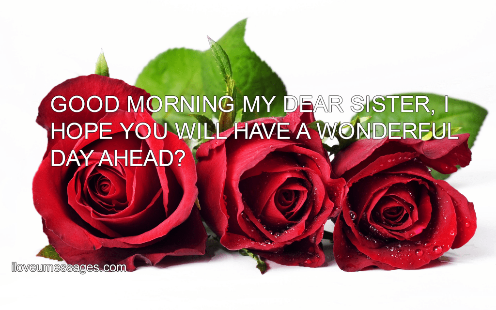 Romantic Good Morning Message To A Friend I Love U Messages