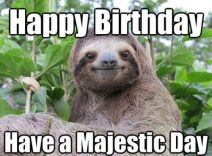 Funny Memes To Cheer Up A Friend : Some beautiful happy birthday memes for me and funny quotes i love
