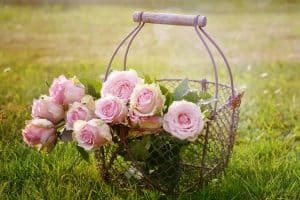 Love and friendship SMS
